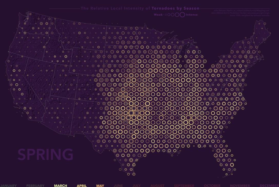 TreeRingSpring