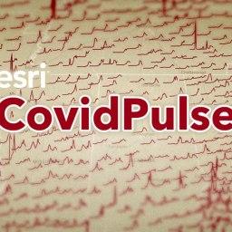 CovidPulse